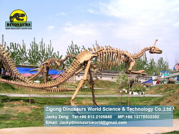 Shopping mall exhibition fossils replica art toys ( Tsintaosaurus ) DWS003