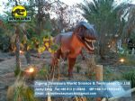 Walking with dinosaurs discovery showroom (Tyrannosaurus Rex) DWD088