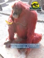Life Size Fiberglass Orangutan Animal Replicas DWA122