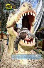 Tyrannosaurus rex Head for kids take photos DWE026