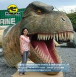 Playground Entertainment items dinosaurs head DWE016