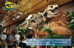 Jurassic park model dinosaurs skeleton replica T-rex Skeleton DWS016