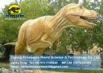 Playground amusement equipment animatronic dinosaur (T-Rex) DWD123