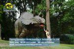 Children indoor soft playground equipment city park Triceratops DWD149