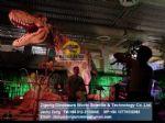 Dino market kids playground dinosaurs ( Tyrannosaurus Rex ) DWD154