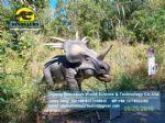China robotic dinosaur equipment move dinosaurs Styracosaurus DWD178