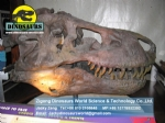 Adventure park hall products ( Tyrannosaurus Rex Head ) DWF004