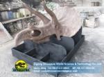 High Quality Handmade Vivid Dinosaur Triceratops Head Fossil DWF006-1