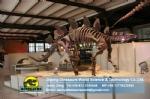 Exhibition hall dinosaurs skeleton replica art toys ( Stegosaur )DWS006