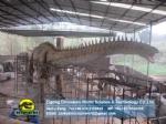 Jurassic World Dinosaur alive Expo Diplodocus DWD1331-1