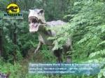 Dinosaur World Theme Park Mechanical Tyrannosaurus rex DWD1340