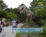 Big allosaurus in zigong animatronic dinosaur factory DWD1456