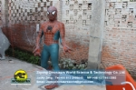 Hollywood movies, classic heroes Spiderman Model DWC062