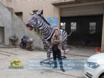 Animatronic Animals Model Robotic Zebra DWA155