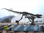 Dinosaur skeleton model paleontologist recovery T-rex Skeleton DWS039