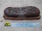 Simulation dinosaur fossil replica of the exhibition elongatoolithus egg ZD13