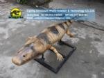 Museum exhibit paleontology restoration model greererpeton DWD5213