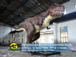 The largest creature dinosaurs animatronic versions T-Rex DWD238